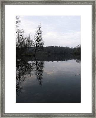 Framed Print featuring the photograph Spring Reflection  by Gerald Strine