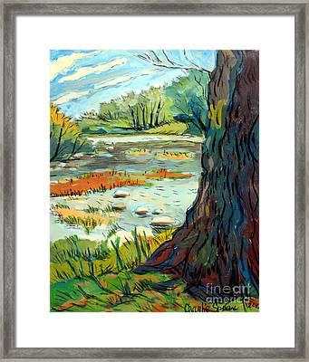 Spring River Eel Framed Print by Charlie Spear