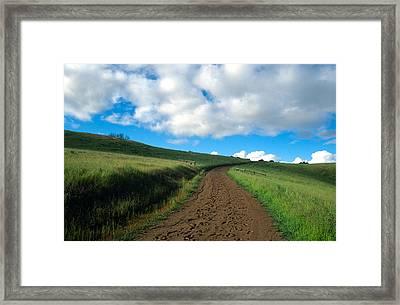 Spring Road 2 Framed Print by Kathy Yates