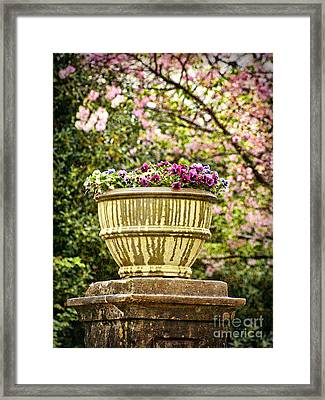 Framed Print featuring the photograph Spring Showers by Cheryl Davis