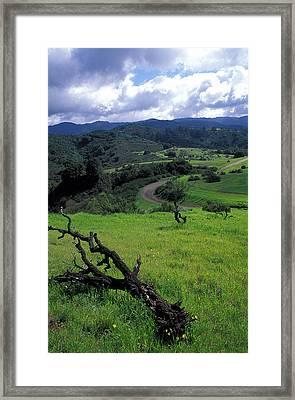 Spring Storm Framed Print by Kathy Yates