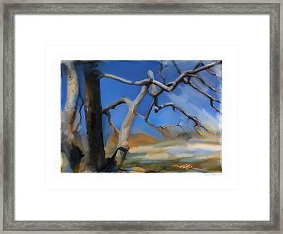 Spring Thaw 1 Framed Print