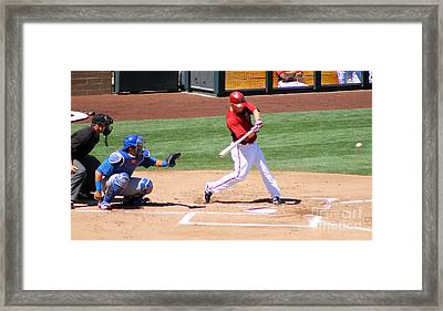 Spring Training 12-4-7 Framed Print by Pamela Walrath