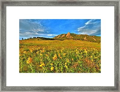 Spring Vision Framed Print by Scott Mahon