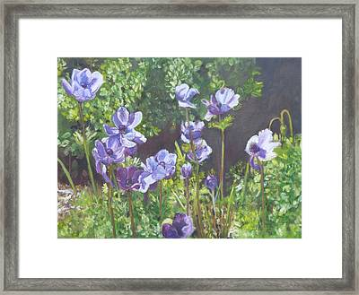 Springs Gifts Framed Print