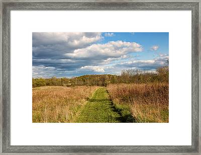 Spring's Mowed Path Framed Print by Rachel Cohen