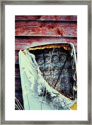 Springs Framed Print by Todd Sherlock