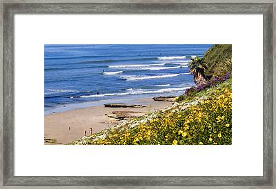 Springtime At Swamis Framed Print by Ron Regalado