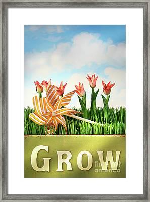 Springtime Fun Framed Print by Sandra Cunningham