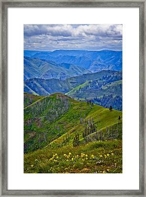 Springtime In Eastern Oregon Framed Print by Jen TenBarge