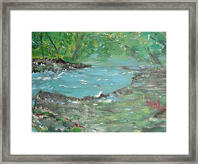 Springtime In The Forest Framed Print