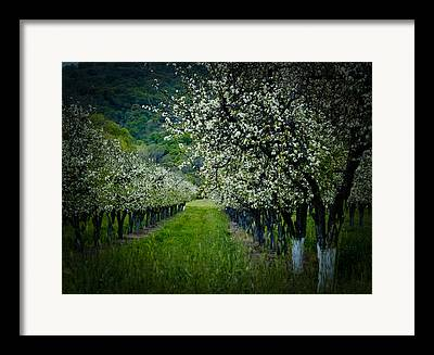 Solano County Framed Prints