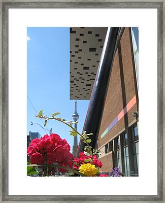 Springtime In Toronto Framed Print by Alfred Ng