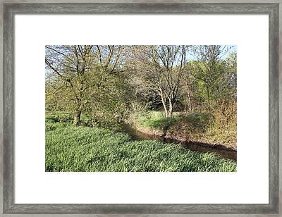 Springtime Meadow Framed Print by Paul Hurtubise