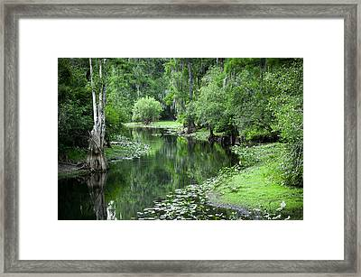 Springtime On The Lake Framed Print by Carolyn Marshall
