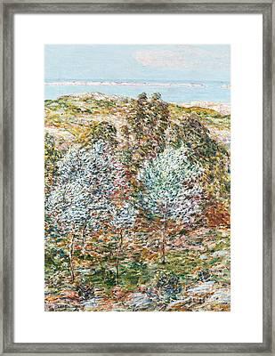 Springtime Vision Framed Print by Childe Hassam