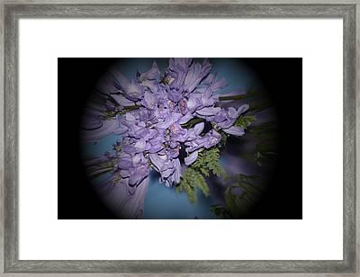 Spyglass Purple Framed Print by Elizabeth  Doran