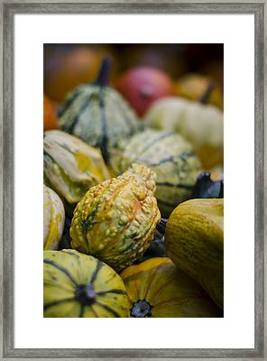 Squashes At The Market Framed Print