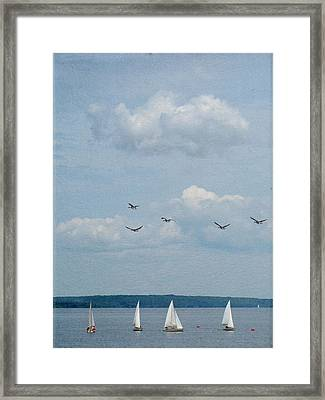 Ssailboats On River Framed Print by Francois Dion