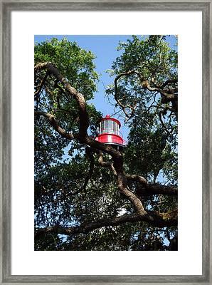 St Augustine Tree House Framed Print by Skip Willits