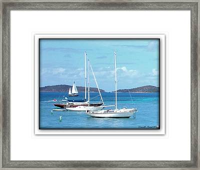 Framed Print featuring the photograph St-thomas Virgin Islands Trio by Danielle  Parent