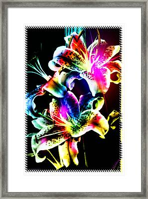 Stack Of Stargazers Dreaming Framed Print by Mick Anderson