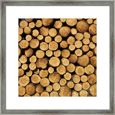 Stack Of Wood Logs. Framed Print by Bernard Jaubert