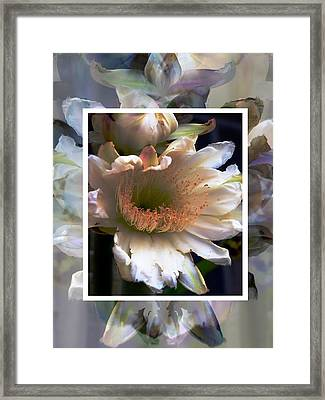 Stacked Floral Framed Print by Regina Arnold