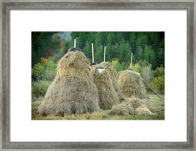 Stacked Hay Framed Print by Gunay Mutlu