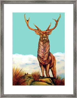 Stag Framed Print by Barbara Stirrup