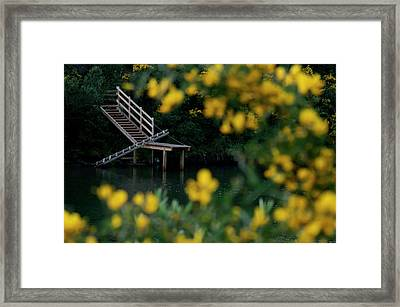 Framed Print featuring the photograph Stairway To Heaven by Pedro Cardona