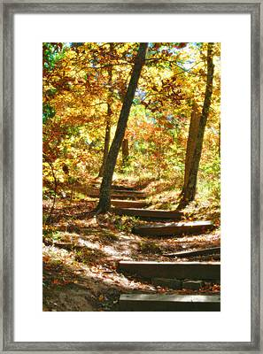 Framed Print featuring the photograph Stairway To Heaven by Peggy Franz