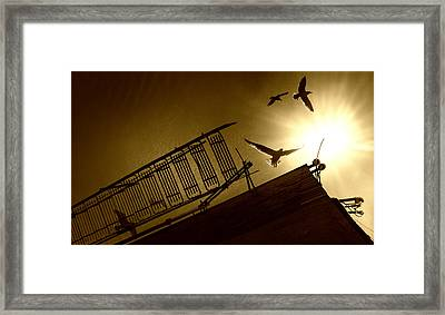 Stairway To Heaven Framed Print by Photo by marianna armata
