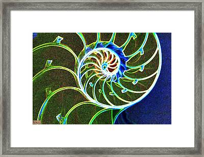 Stairway To The Sea Framed Print by Paula Greenlee