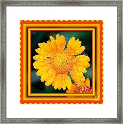 Stamp Of Happiness Framed Print by Carol Groenen