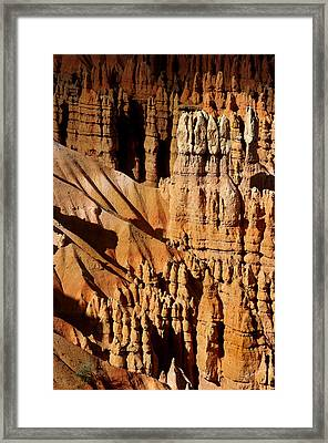 Framed Print featuring the photograph Stand Tall by Vicki Pelham