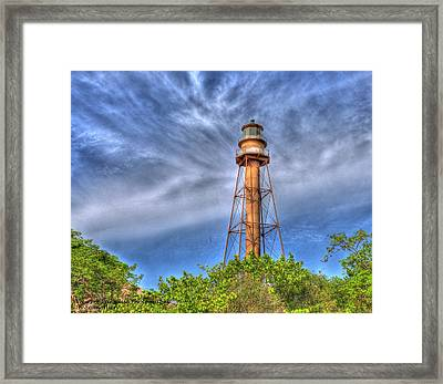 Standing Above The Trees Framed Print by Sean Allen