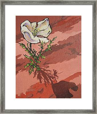 Standing Alone Framed Print by Sandy Tracey