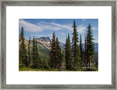 Framed Print featuring the photograph Standing Tall And Proud Are Mount Gould And Subalpine Fir 2 by Katie LaSalle-Lowery