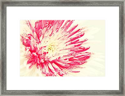 Star Framed Print by Angela Doelling AD DESIGN Photo and PhotoArt
