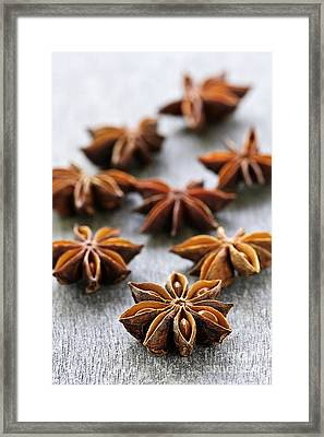 Star Anise Fruit And Seeds Framed Print