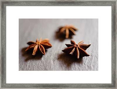 Star Anise On Slate Tray Framed Print