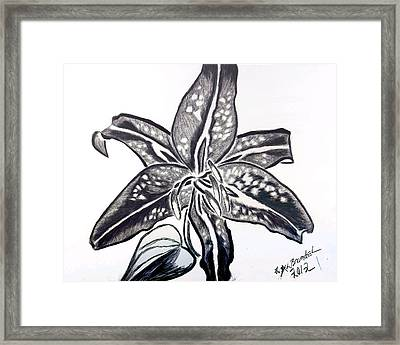 Framed Print featuring the drawing Star Gazer Limited by Lisa Brandel