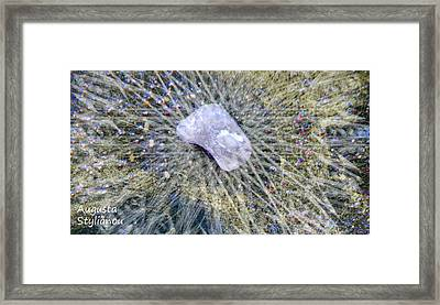 Star Hip 53550  Framed Print by Augusta Stylianou