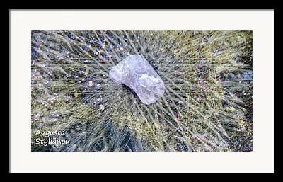 Star Cataloque Photographs Framed Prints