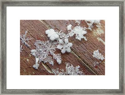 Framed Print featuring the photograph Star Shaped Snow Flakes by Chad and Stacey Hall