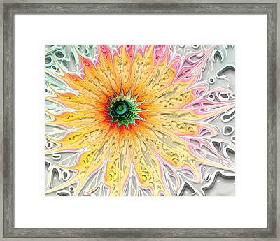 Starburst Framed Print by Amanda Moore