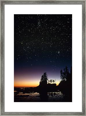 Starfield Over A Group Of Coastal Trees Framed Print by David Nunuk
