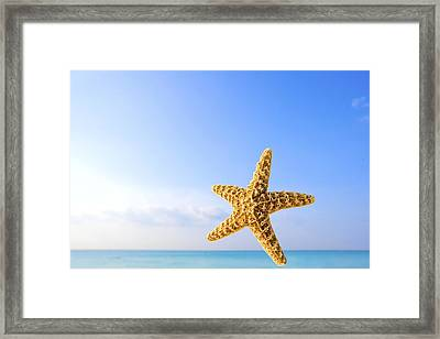 Starfish In Front Of The Ocean Framed Print by Richard Wear