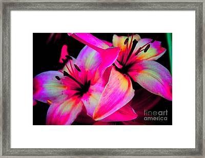 Stargazer Abstract Framed Print